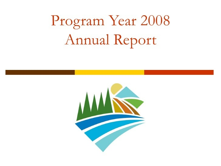 Program Year 2008 Annual Report