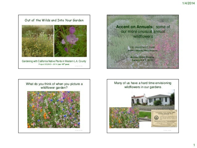 1/4/2014  Out of the Wilds and Into Your Garden  Accent on Annuals: some of our more unusual annual wildflowers C.M. Vadhe...