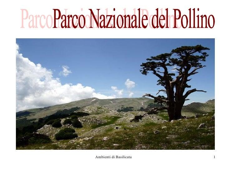Parco Nazionale del Pollino Parco Nazionale del Pollino