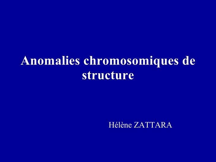 Anomalies chromosomiques de structure Hélène ZATTARA