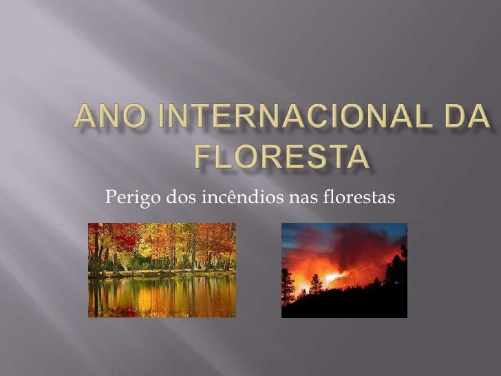 Ano internacional da floresta<br />Perigo dos incêndios nas florestas <br />