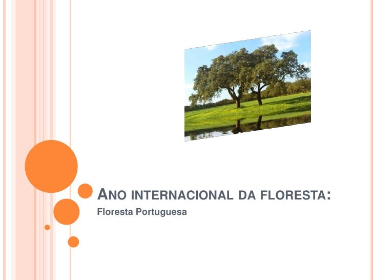 Ano internacional da floresta:<br />Floresta Portuguesa<br />