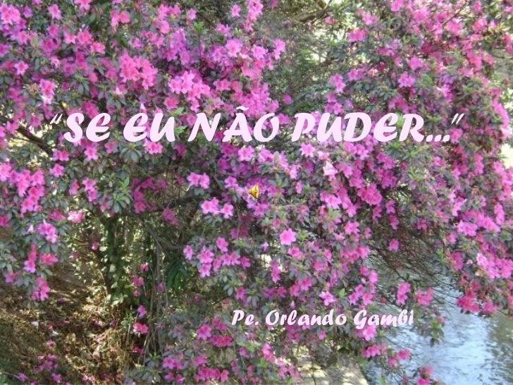 """""""SE EU NÃO PUDER...""""        Pe. Orlando Gambi"""