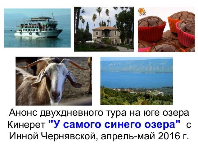 """Анонс двухдневного тура на юге озера Кинерет """"У самого синего озера"""" с Инной Чернявской, апрель-май 2016 г."""