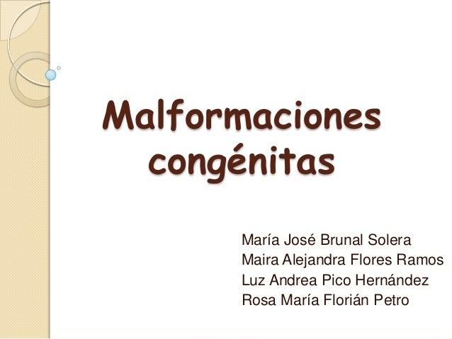 Malformaciones  congénitas      María José Brunal Solera      Maira Alejandra Flores Ramos      Luz Andrea Pico Hernández ...