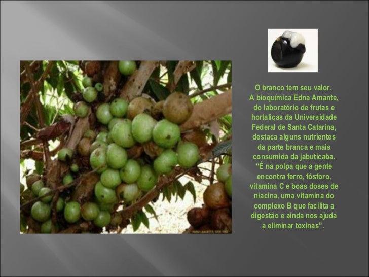 O branco tem seu valor.  A bioquímica Edna Amante, do laboratório de frutas e hortaliças da Universidade Federal de Santa ...