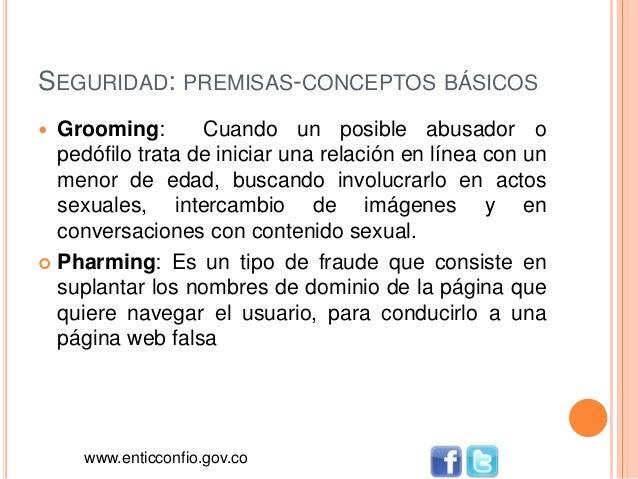 SEGURIDAD: PREMISAS-CONCEPTOS BÁSICOS  Grooming: Cuando un posible abusador o pedófilo trata de iniciar una relación en l...