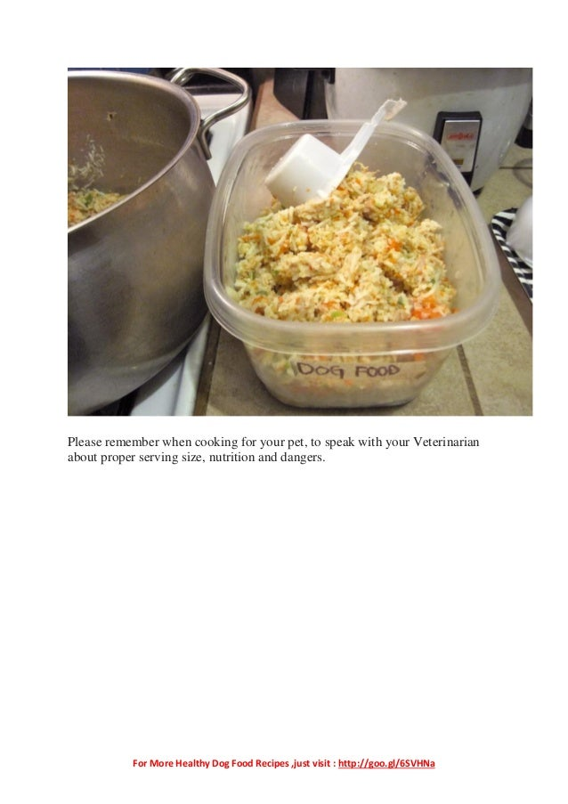 Veterinarian Recommended Homemade Dog Food