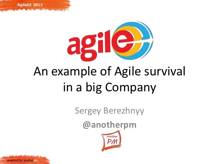 An example of Agile survival     in a big Company       Sergey Berezhnyy         @anotherpm