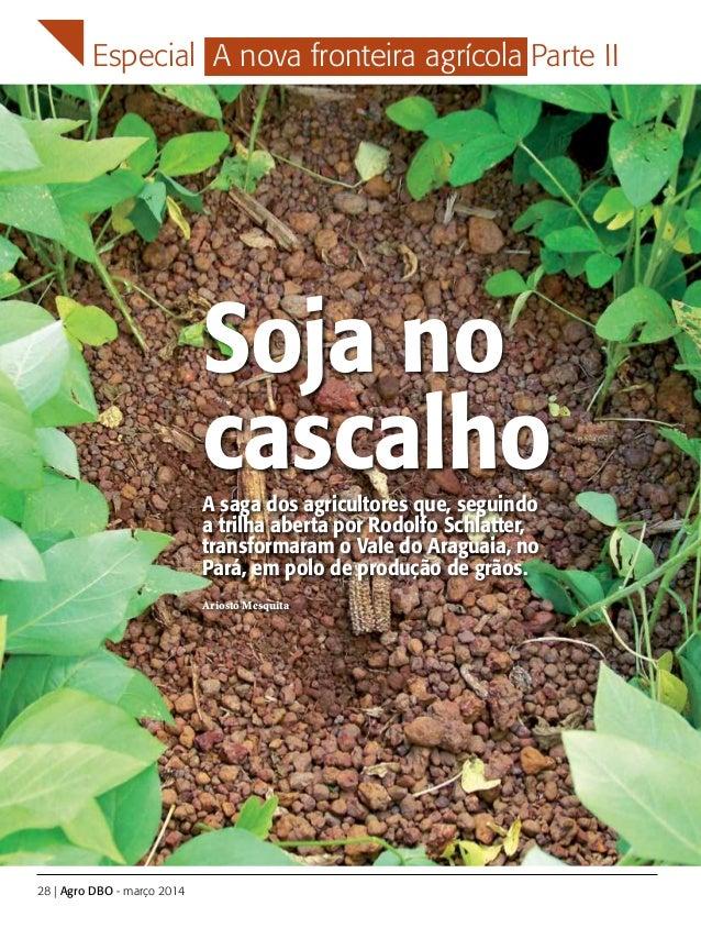 Especial A nova fronteira agrícola Parte II 28 | Agro DBO - março 2014 Soja no cascalhoA saga dos agricultores que, seguin...