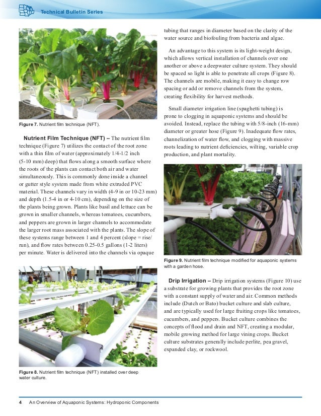 An Overview of Aquaponic Systems: Hydroponic Components