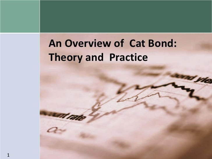 An Overview of Cat Bond:    Theory and Practice1