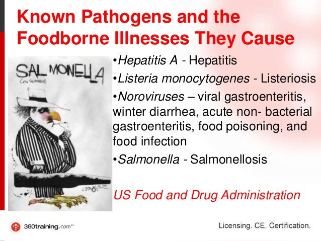 Foodborne Illnesses and Germs
