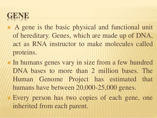 an overview of the human genome project The human genome project, an overview three days from now in stockholm, sweden, two more texans will receive the nobel prize: smalley and curl of.