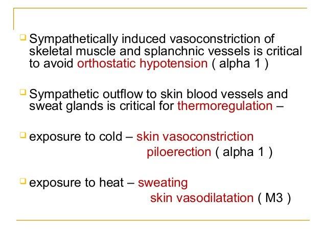 "OrganParasympatheticResponse""RestandDigest""SympatheticResponse""FightorFlight""Heart(baroreceptorreflex)Decreased ..."