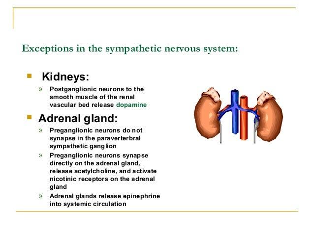 Stellate ganglion blockindications, procedure andcomplications