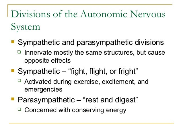 Divisions of the Autonomic NervousSystem Sympathetic and parasympathetic divisions Innervate mostly the same structures,...
