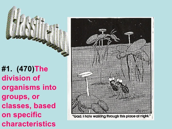 Classification #1.  (470) The division of organisms into groups, or classes, based on specific characteristics