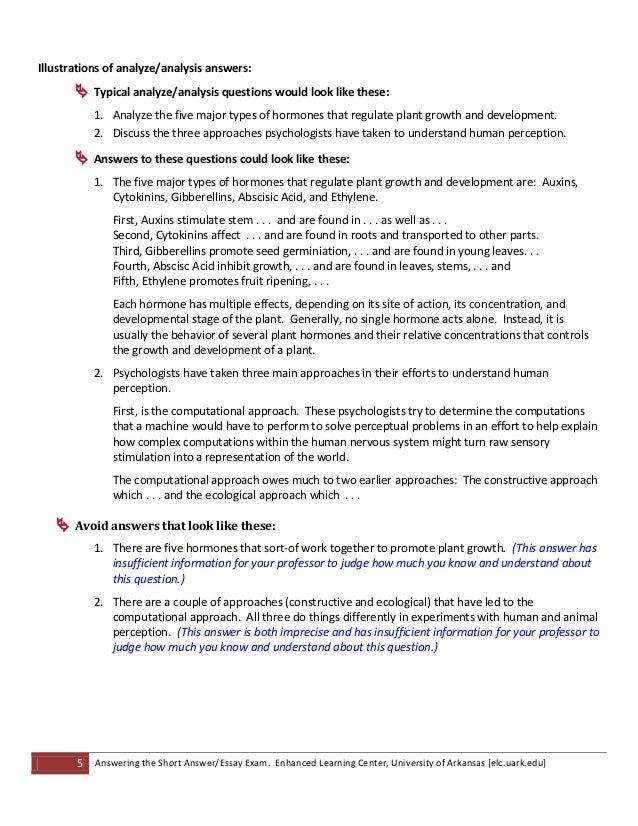 short essay questions examples