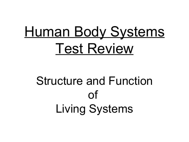 Human Body Systems Test Review Structure and Function of Living Systems