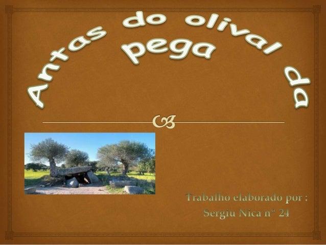   Eu escolhi as Antas do Olival da Pega porque quero aprender um pouco mais sobre as antas. Introdução