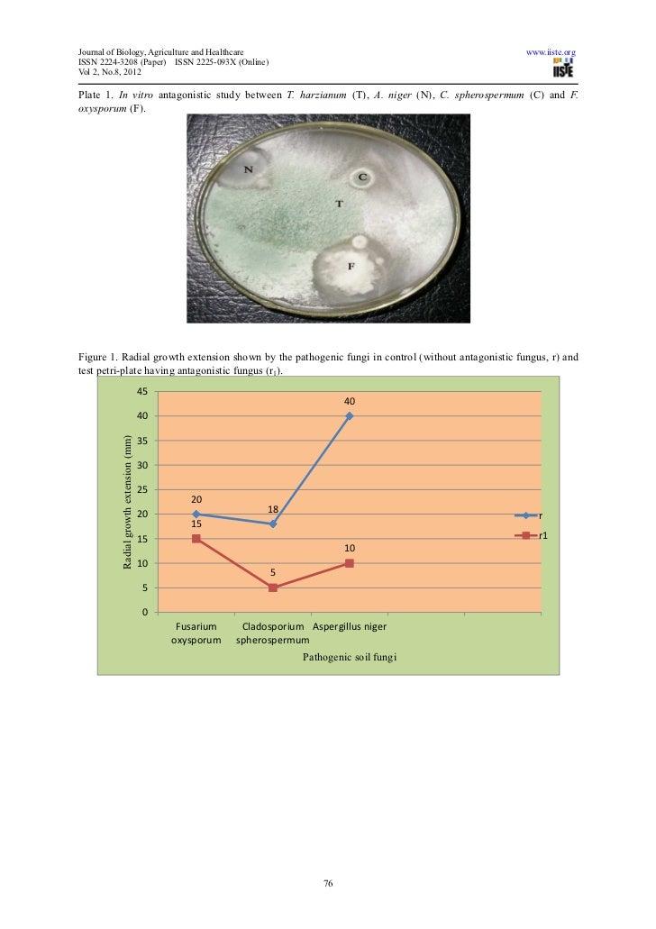 fusarium oxysporum thesis Management of fusarium wilt diseases using non-pathogenic fusarium oxysporum and silicon the research reported in this thesis.