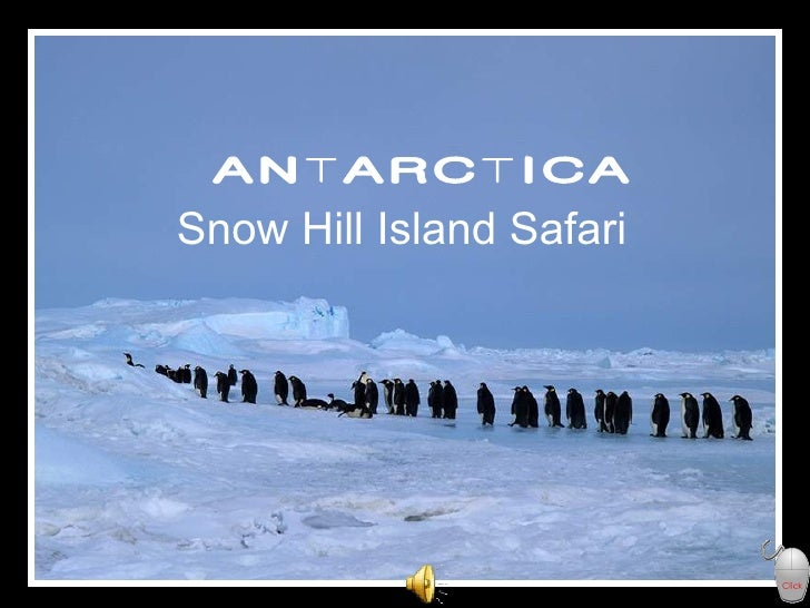 ANTARCTICA Snow Hill Island Safari