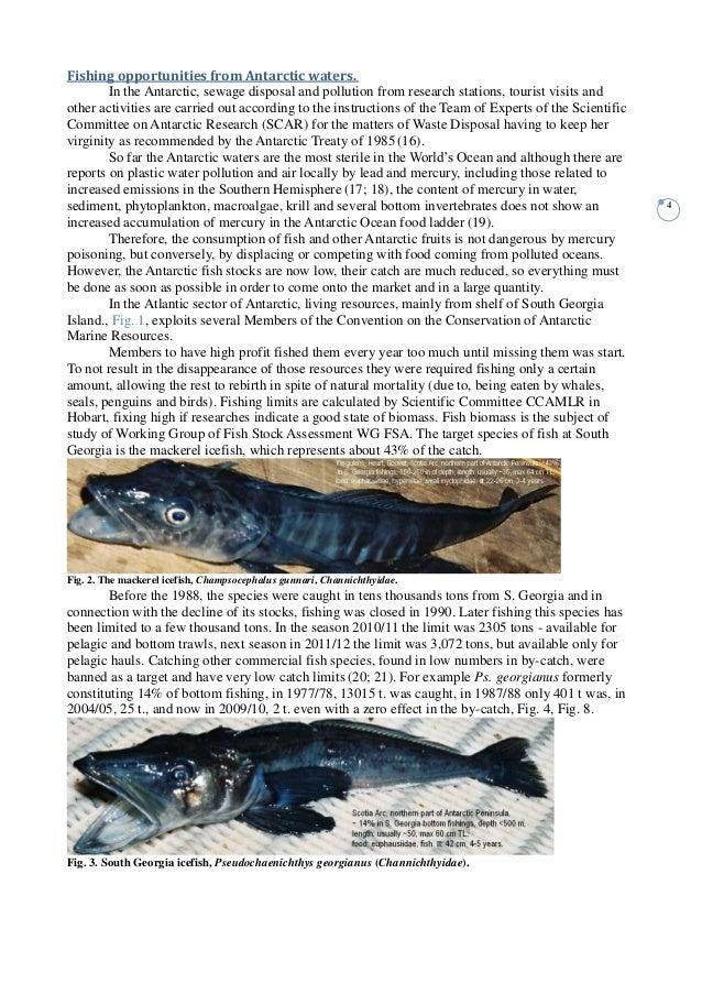 Antarctica fish mercury for Fish and mercury