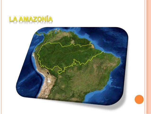 LA CUENCA AMAZÓNICA  La cuenca amazónica posee una superficie de 6,2 millones de km², abarca varios países de Sudamérica ...