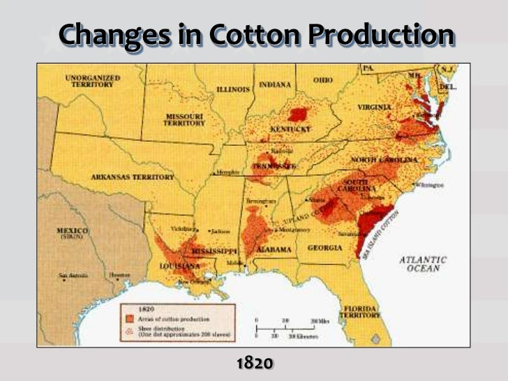 Antebellum American Society Pt - Us cotton production map