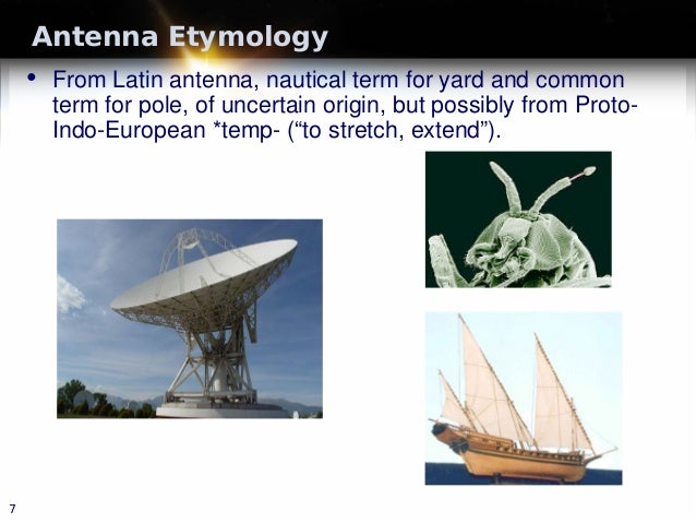 Antenna Etymology • From Latin antenna, nautical term for yard and common term for pole, of uncertain origin, but possibly...