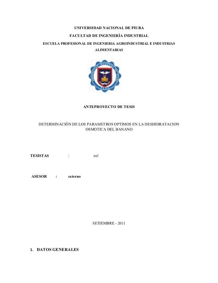 UNIVERSIDAD NACIONAL DE PIURA                    FACULTAD DE INGENIERÍA INDUSTRIAL     ESCUELA PROFESIONAL DE INGENIERIA A...