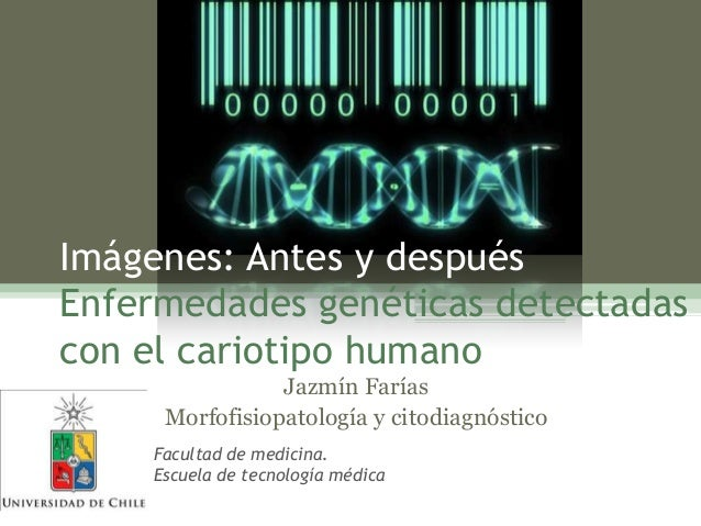 Imágenes: Antes y después Enfermedades genéticas detectadas con el cariotipo humano Jazmín Farías Morfofisiopatología y ci...
