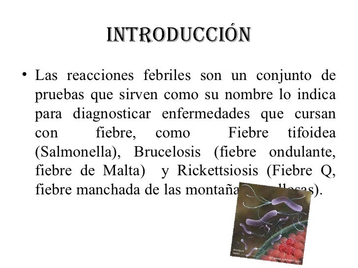 INTRODUCCIÓN• Las reacciones febriles son un conjunto de  pruebas que sirven como su nombre lo indica  para diagnosticar e...