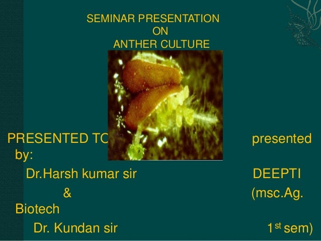 SEMINAR PRESENTATION ON ANTHER CULTURE  PRESENTED TO: by: Dr.Harsh kumar sir & Biotech Dr. Kundan sir  presented DEEPTI (m...