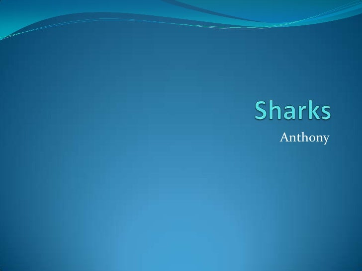 Sharks<br />Anthony<br />