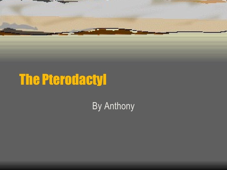 The Pterodactyl By Anthony