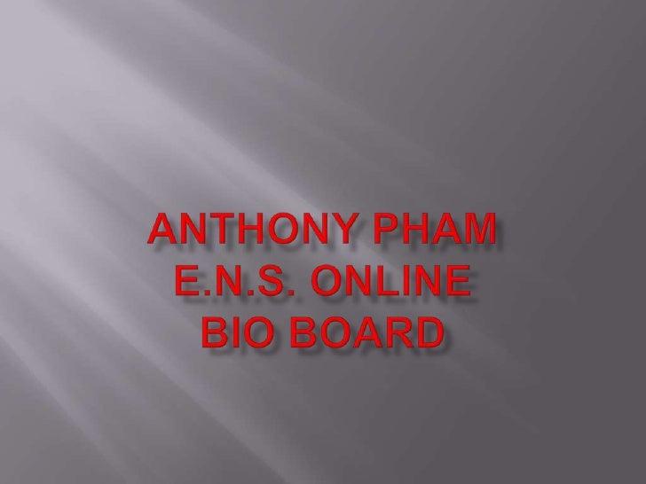 Anthony Pham E.N.S. ONLINEBio Board<br />