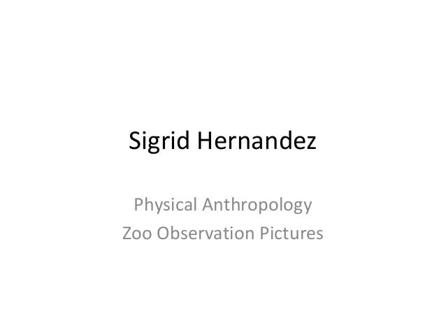 Sigrid Hernandez Physical Anthropology Zoo Observation Pictures