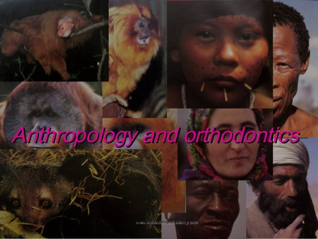 Anthropology and orthodontics  www.indiandentalacademy.com