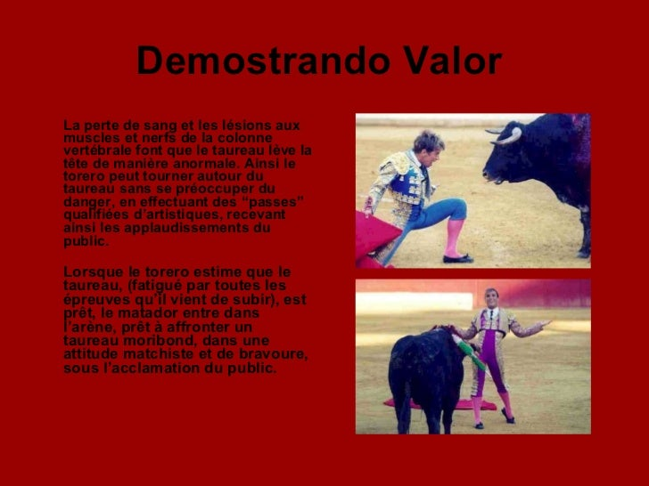Demostrando Valor   <ul><li>La perte de sang et les lésions aux muscles et nerfs de la colonne vertébrale font que le taur...