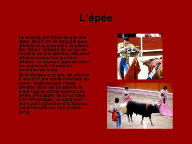 L'épée <ul><li>Le taureau est traversé par une épée  de 80 cm de long qui peut atteindre les poumons, la plèvre, etc. Selo...