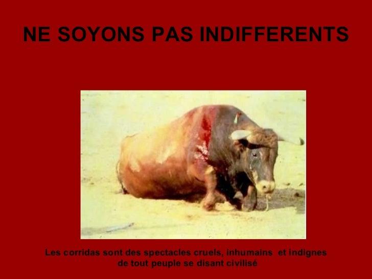 NE SOYONS PAS INDIFFERENTS Les corridas sont des spectacles cruels, inhumains   et indignes  de tout peuple se disant civi...