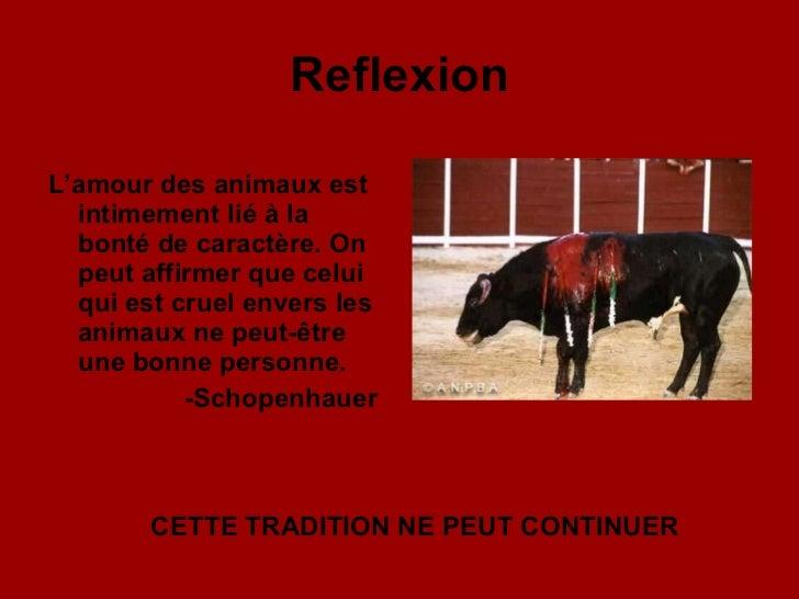 Reflexion <ul><li>L'amour des animaux est intimement lié à la bonté de caractère. On peut affirmer que celui qui est cruel...