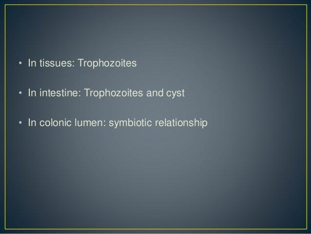 Ivermectin as antiviral
