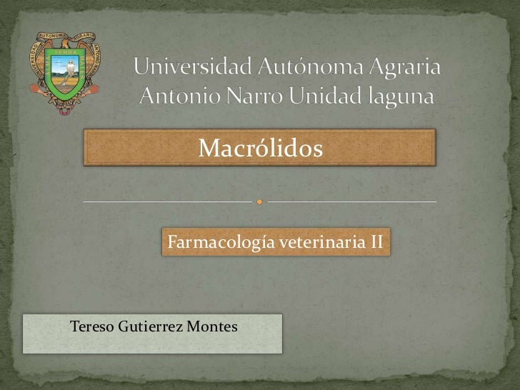 Macrólidos             Farmacología veterinaria IITereso Gutierrez Montes