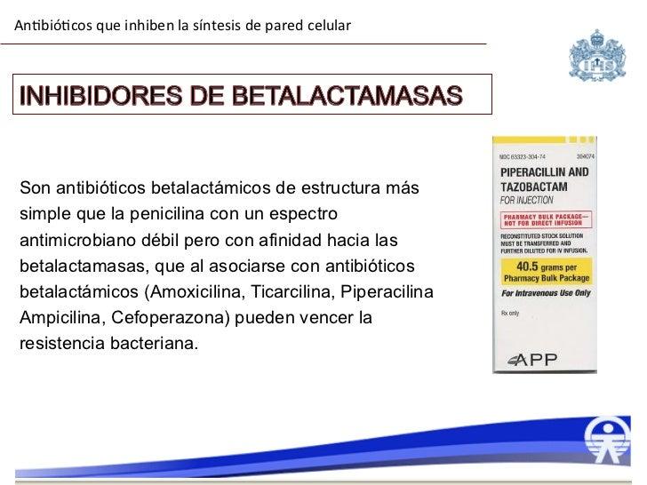 Ampicilina sulbactam mecanismo de accion pdf reader