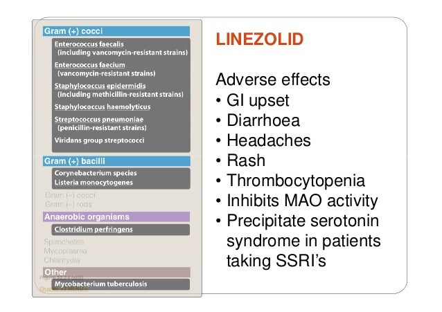 Linezolid Dosage For Mrsa