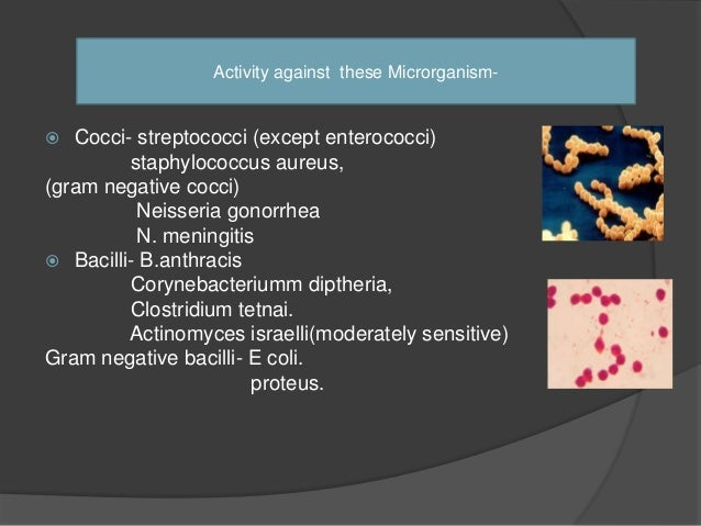 Pharmacokinetics  It is relatively unstable in acid, thus the bioavailability is low.  There is poor penetration into th...