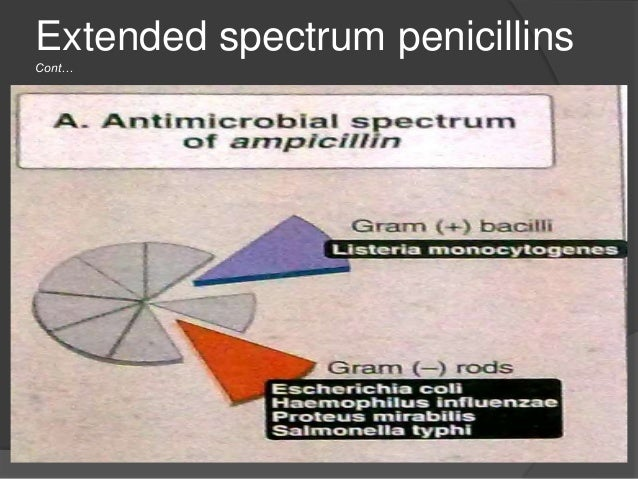 Extended spectrum penicillins Cont… Pharmacokinetics:  Acid resistant  Oral absorption is incomplete but adequate  Prim...